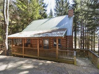 Cozy mountain cabin in a most convenient location for an incredible vacation! - Canaan Valley vacation rentals