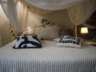 Safari room at La Dolce Vite - rural B&B in Azille - Azille vacation rentals