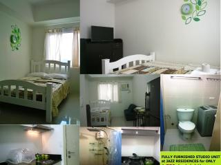 Affordable Studio Unit (11th floor) - Makati vacation rentals