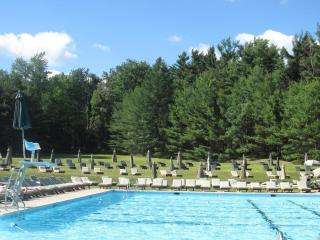 Amazing! Pinecrest Lake 3BR, 2BA w/Club Membership - Thornhurst vacation rentals