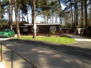 Luxury chalet for hire in Wokingham - Wokingham vacation rentals