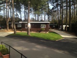 Luxury 3 chalet for hire in Wokingham - Wokingham vacation rentals