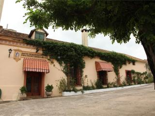 Holiday Villa in Valencia - Alzira vacation rentals