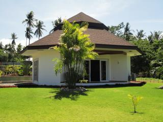1 bedroom beach front villa in dauin - Dauin vacation rentals