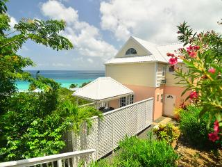 An Ocean View Villa 2 Minutes To The Beach - Road Town vacation rentals