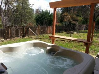 Natures Niche Sunny Studio in town 9 m to Yosemite - Wawona vacation rentals
