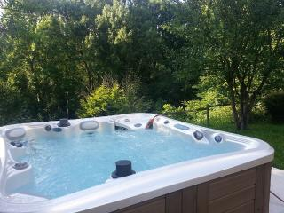 Beautiful Cottage with Internet Access and Wireless Internet - La Vicomte-sur-Rance vacation rentals