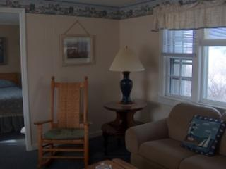 Large 2 Bedroom Unit Near Beaches - North Truro vacation rentals