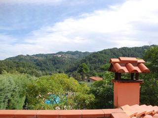 12km from sandy beaches of Versilia- Small farmhouse in a quiet position surrounded by trees. SAL OLI - Lucca vacation rentals