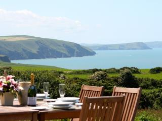 Seaview Cottage in the Pembrokeshire Coast Park - Newport vacation rentals