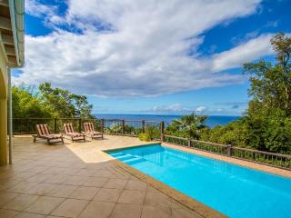 Perfect Villa with Internet Access and Dishwasher - Caneel Bay vacation rentals