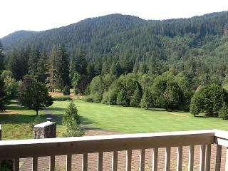 Golf Course Condo with spectacular views*Spring Break Special!* - Rhododendron vacation rentals