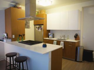 500 N Lakeshore Studio - Chicago vacation rentals