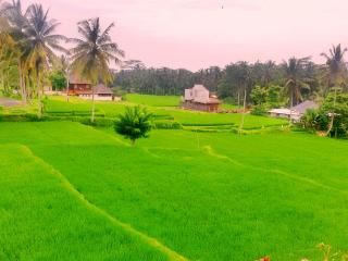 The suci villa ubud rural atmosphere - Petulu vacation rentals
