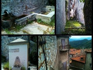 RELAX IN BORGO MEDIEVALE - Borgo a Mozzano vacation rentals