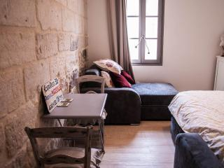 Beautiful Studio in Avignon Center, Pet-Friendly and Air Conditioned - Avignon vacation rentals