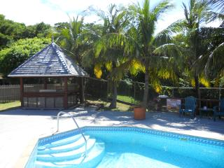 Chateau Devaux - Secluded Cliff Top Manor - Cap Estate, Gros Islet vacation rentals