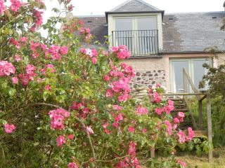 Plum Braes Cottage with lovely views, patio, BBQ - Kelso vacation rentals