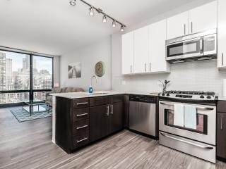1 bedroom Apartment with Long Term Rentals Allowed (over 1 Month) in Chicago - Chicago vacation rentals