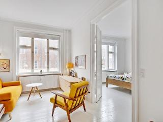 Copenhagen apartment with large roof terrace - Copenhagen vacation rentals
