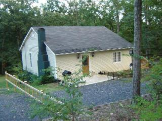Mt. Mist - New Outdoor Hot Tub, Fireplace, River - Luray vacation rentals