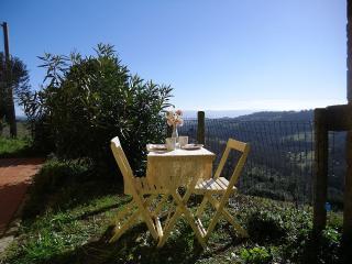 Podere a Scansano vicino a Terme di Saturnia, Mare - Scansano vacation rentals