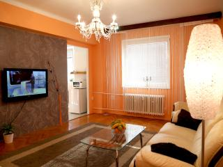 1 bedroom Apartment with Internet Access in Olomouc - Olomouc vacation rentals