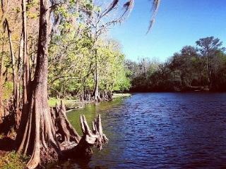 Turtle Heaven on the Santa Fe River - Fort White vacation rentals
