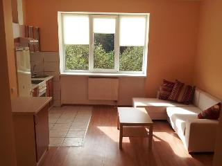 Lovely Condo with Internet Access and Central Heating - Kaunas vacation rentals