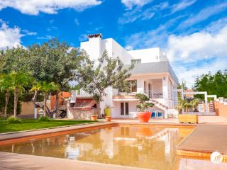 AMAZING VILLA WITH STUNNING SEA VIEWS IN DENIA - Denia vacation rentals