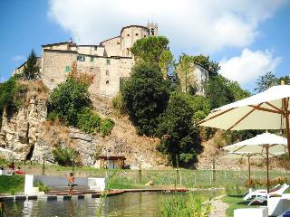 SPA - Antique house in Medieval village - 100m fro - Sasso Pisano vacation rentals