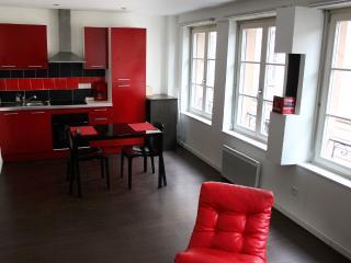 appartement quartier cathedra pop - Strasbourg vacation rentals