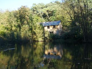Nice Watermill with Internet Access and Balcony - Bain-de-Bretagne vacation rentals