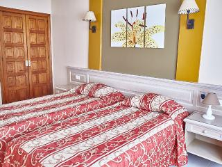 Sunny Apartment with two bedrooms Costa Adeje - San Eugenio vacation rentals