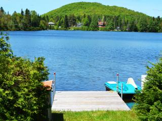 Cozy Laurentian chalet on the shore - Val-des-Lacs vacation rentals