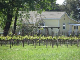 Wine Country Home On 5 Acres By The Russian  River - California Wine Country vacation rentals