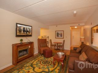 Gatlinburg Towers #202 - Gatlinburg vacation rentals