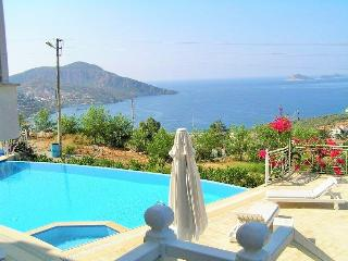 A fabulous apartment - Lily in Kiziltas .Kalkan - Kalkan vacation rentals