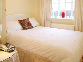 Studio Apartment in the heart of central London - London vacation rentals