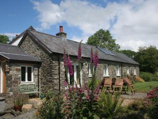 Cwt Mochyn, Banceithin Farm and Holiday Cottages - Llanon vacation rentals