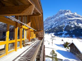 3 bedroom Condo with Internet Access in Grindelwald - Grindelwald vacation rentals