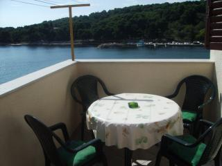 Romantic 1 bedroom Condo in Prvic - Prvic vacation rentals