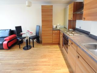 City City Apt 2 Bed Sleeps 6 (fr1) - Manchester vacation rentals