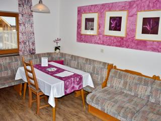 TOP 203 Astoria Apartments Wildschönau Austria - Oberau vacation rentals