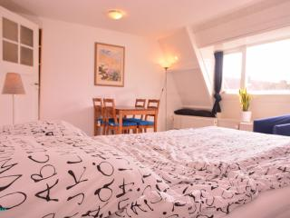Spacious Apartment Heemskerkstraat3 - Rotterdam vacation rentals