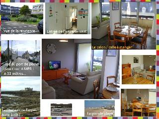 Cozy Condo in Quiberon with Washing Machine, sleeps 5 - Quiberon vacation rentals
