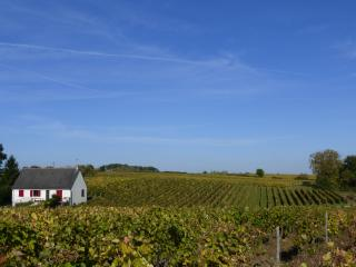Bright 5 bedroom Vouvray House with Internet Access - Vouvray vacation rentals
