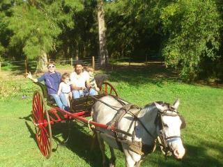 Guest Ranch at Estancia El Venado (Green) All Incl - Province of Buenos Aires vacation rentals