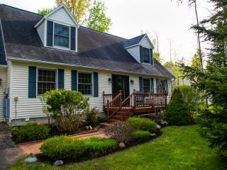 Northern Michigan Retreat (Across from Burt Lake) - Alanson vacation rentals