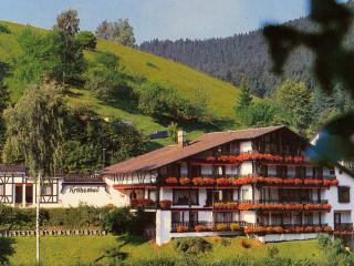 Krähenbad Hotel 3*** - Alpirsbach vacation rentals